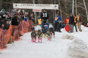 CANADIAN CHALLENGE INTERNATIONAL SLED DOG RACE 2017
