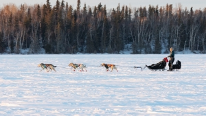 Canadian-Challenge-International-Dog-Sled-Race-2020;Clayton-Perry
